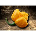 Trinidad Moruga Scorpion Yellow